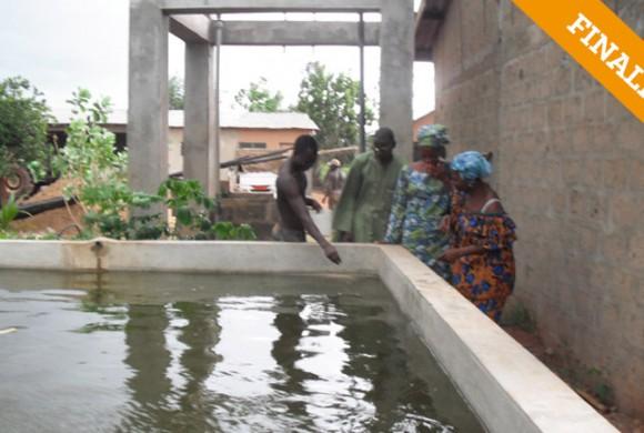 Centro piscícola. Portonovo – Benín