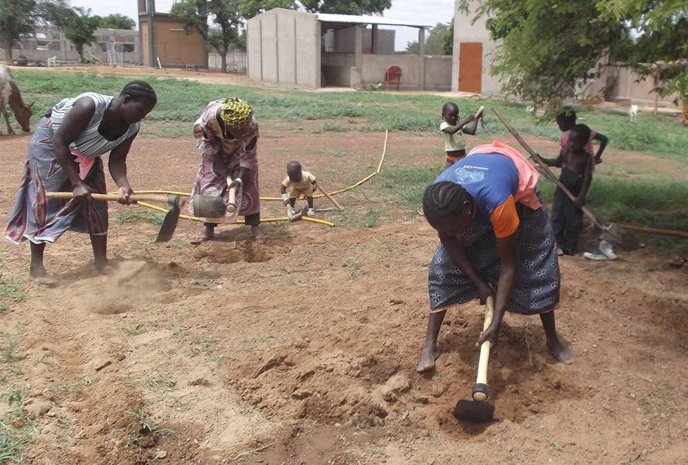 burkina-faso-horticultura